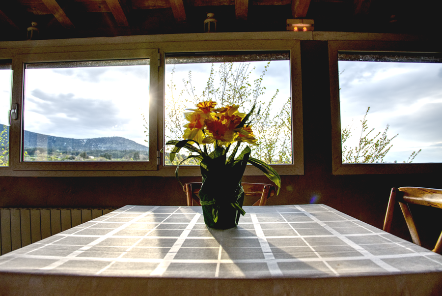 Flores sobre una mesa